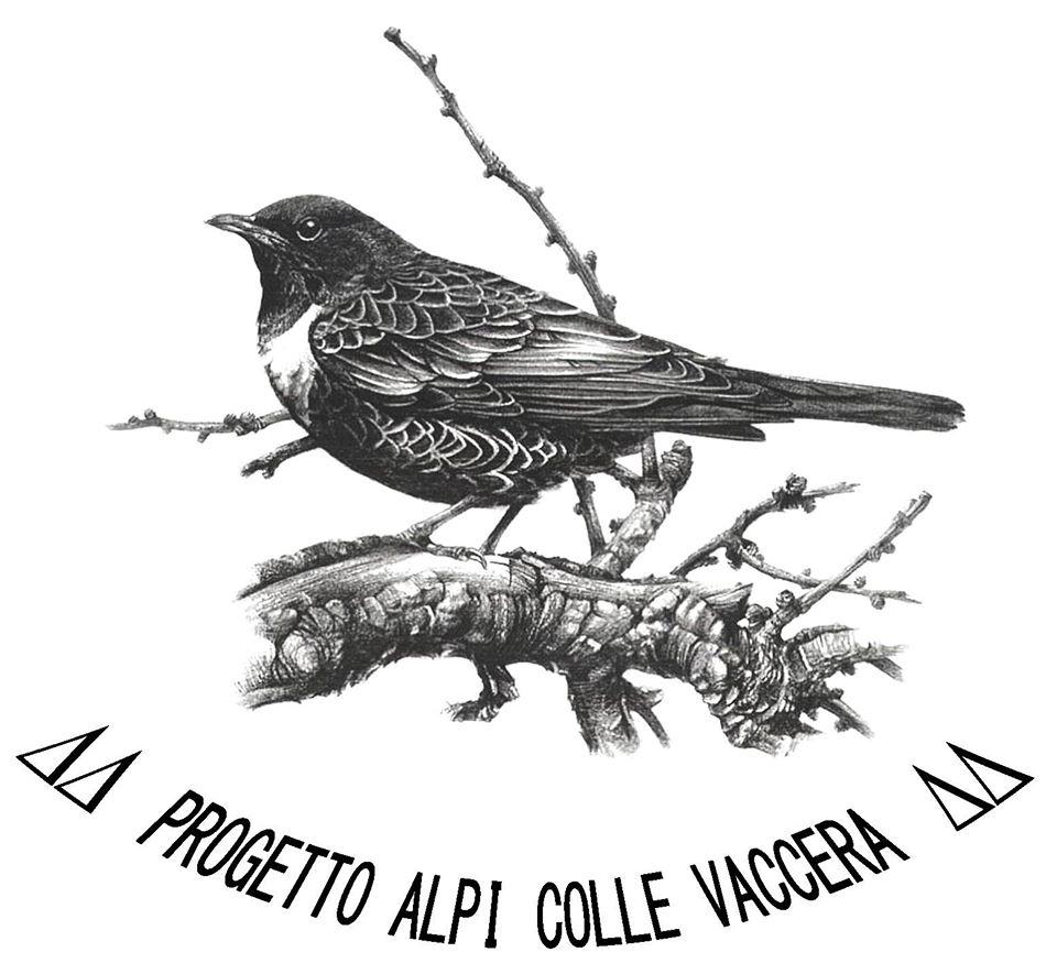 Logo Vaccera